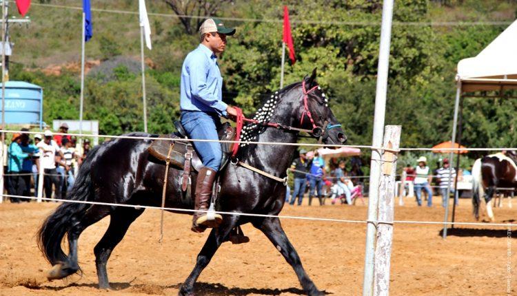 Campeonato de Equinos e Levantamento de Mastro marcam festejos do 2 de Julho desse final de semana