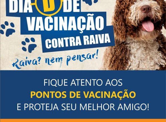 Dia D da Campanha de Vacinação Antirrábica é neste sábado (04/08) em Caetité