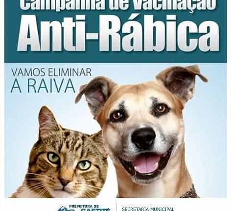Fique atento a Campanha de Vacinação Antirrábica em Caetité