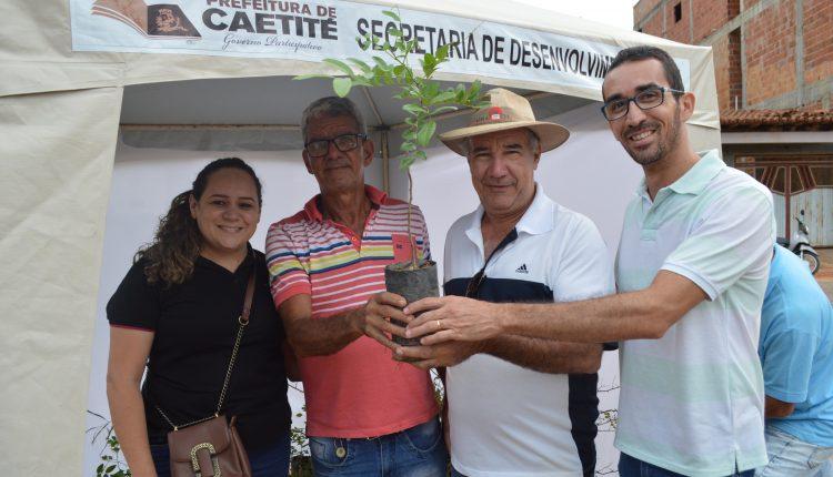 Prefeitura distribui mudas de plantas nativas na Feira da Agricultura Familiar